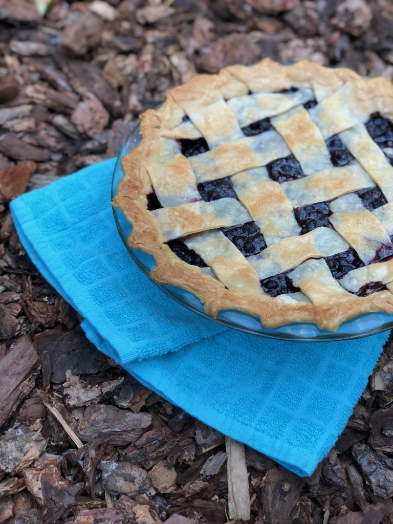 Alaskan Wild Blueberry Pie